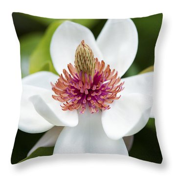 Magnolia Wieseneri Flower Throw Pillow