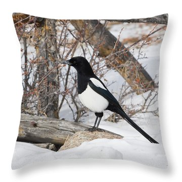 Magpie - 6892 Throw Pillow