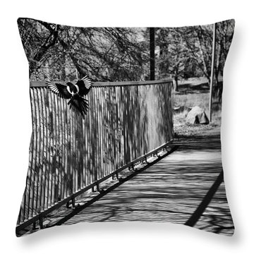 Magpies Home Decor