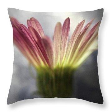 Magritte's Drop Throw Pillow