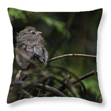 Maiden Flight Throw Pillow