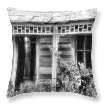 Throw Pillow featuring the photograph Maiden History 2 by Susan Kinney