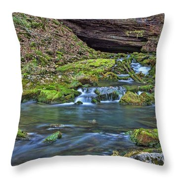Maiden Springs Throw Pillow