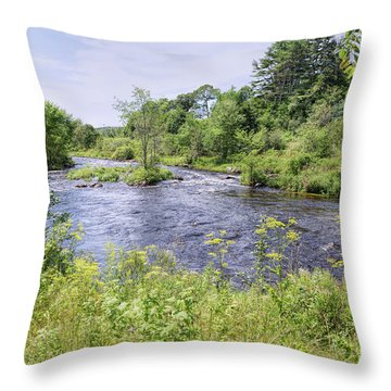 Throw Pillow featuring the photograph Maine Beauty by John M Bailey