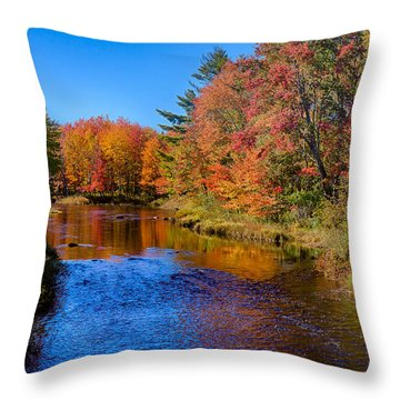 Maine Brook In Afternoon With Fall Color Reflection Throw Pillow