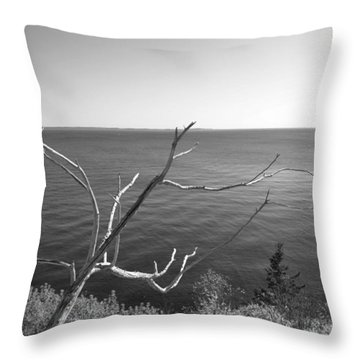 Throw Pillow featuring the photograph Maine Coastline by Corinne Rhode