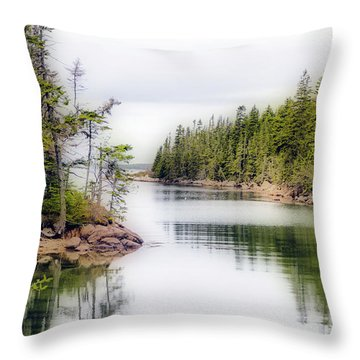 Throw Pillow featuring the photograph Maine Cove  by Betty Pauwels