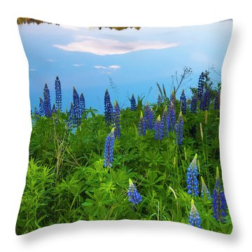 Throw Pillow featuring the photograph Maine Field Of Lupines by Ranjay Mitra