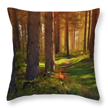Maine Forest Sunset Throw Pillow by David Dehner