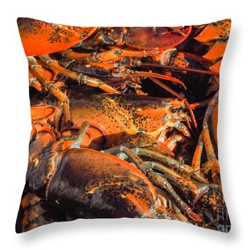 Maine Lobsters Throw Pillow
