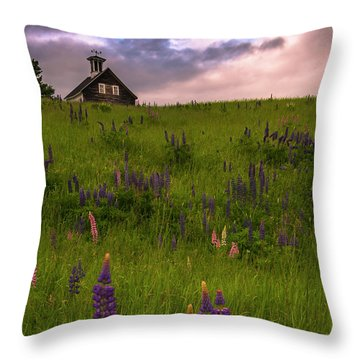 Maine Lupines And Home After Rain And Storm Throw Pillow by Ranjay Mitra