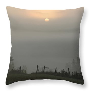 Maine Morning Throw Pillow
