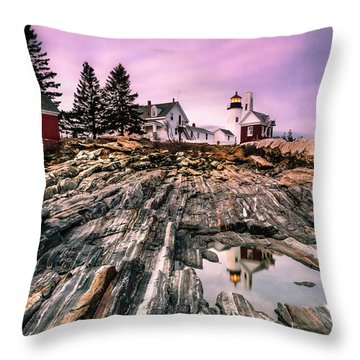 Maine Pemaquid Lighthouse Reflection In Summer Throw Pillow by Ranjay Mitra