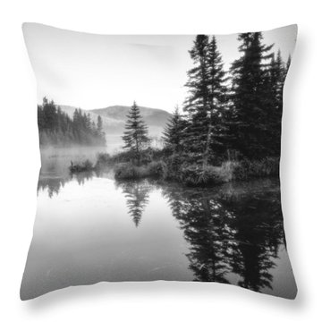 Maine Solitude Throw Pillow by Michael Hubley