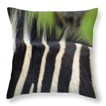 Mainly Mane Throw Pillow