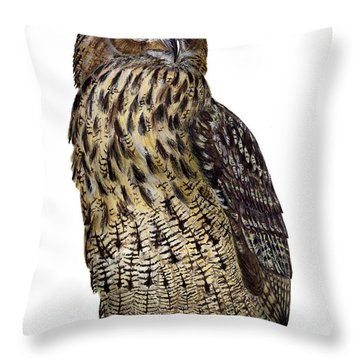 Majestic Eurasian Northern Eagle Owl Bubo Bubo - Hibou Grand-duc - Buho Real - Nationalpark Eifel Throw Pillow