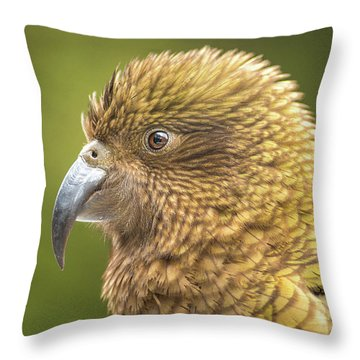 Kea Portrait Throw Pillow