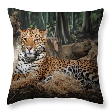 Majestic Leopard Throw Pillow