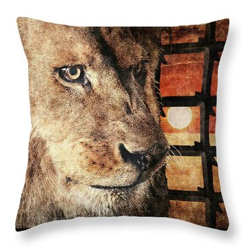 Majestic Lion In Captivity Throw Pillow