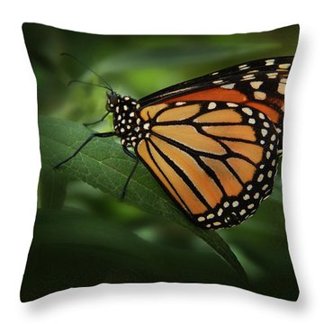 Majestic Monarch Throw Pillow by Marie Leslie