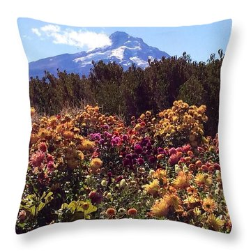 Majestic Mount Hood  Throw Pillow by Jennifer Lake