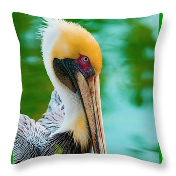Majestic Pelican 48 Throw Pillow