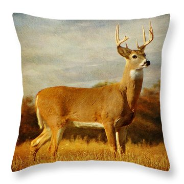 Throw Pillow featuring the photograph Majestic Pose by Blair Wainman