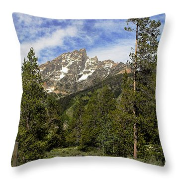 Throw Pillow featuring the photograph Majestic Splendor by Dan Wells