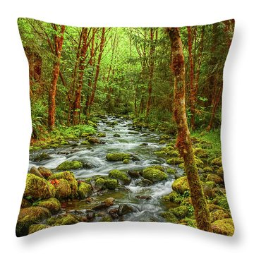 Majestic Stream Throw Pillow