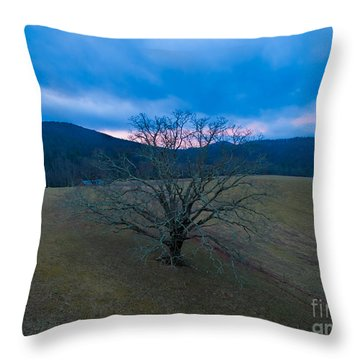 Majestical Tree Throw Pillow by Robert Loe