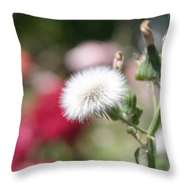 Make A Wish... Throw Pillow