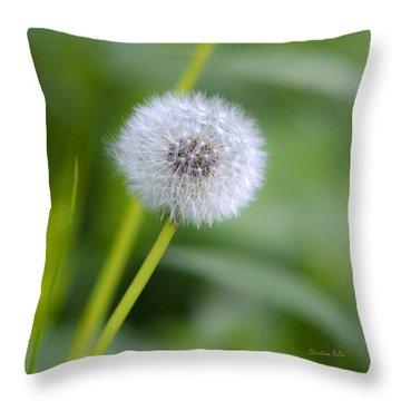 Make A Wish Dandelion Throw Pillow by Christina Rollo