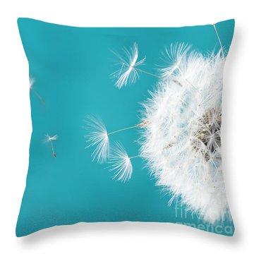 Make A Wish II Throw Pillow by Anastasy Yarmolovich