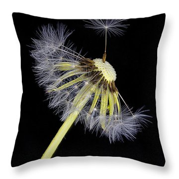 Make A Wish Throw Pillow