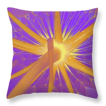 Make A Wish Throw Pillow by Robert Ball