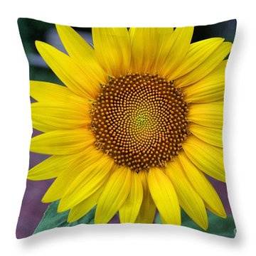 Makes  Me And You Smile Throw Pillow by John S