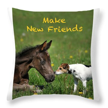 Make New Friends Throw Pillow