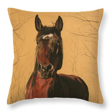 Maki Throw Pillow by Melita Safran