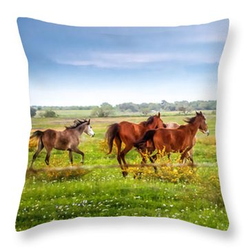 Throw Pillow featuring the photograph Making A Diner Run by Melinda Ledsome