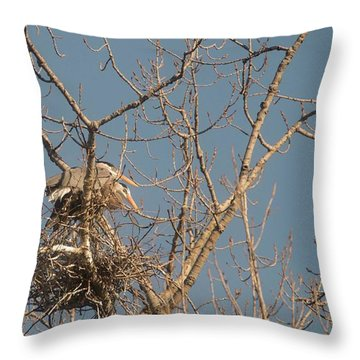Throw Pillow featuring the photograph Making Babies by David Bearden