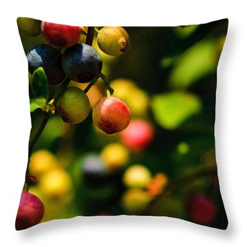 Making Blueberries Throw Pillow