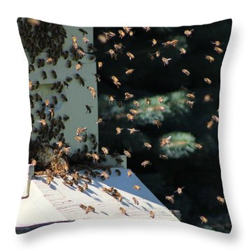 Making Honey - Landscape Throw Pillow