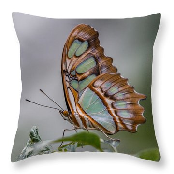Malachite Butterfly Profile Throw Pillow