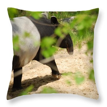 Throw Pillow featuring the photograph Malayan Tapir by Ramona Whiteaker
