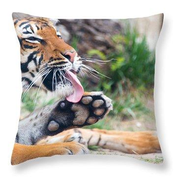 Malayan Tiger Grooming Throw Pillow