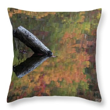 Malbourn Pond Abstract Throw Pillow