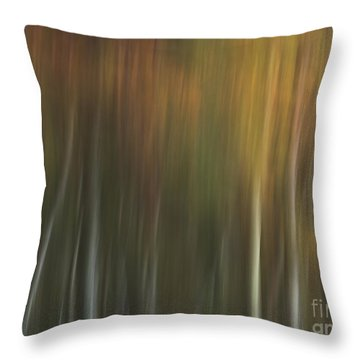 Malbourn Pond Pan Throw Pillow
