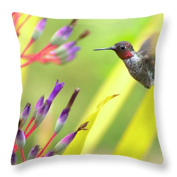 Male Anna's Hummingbird Throw Pillow by Mike Herdering