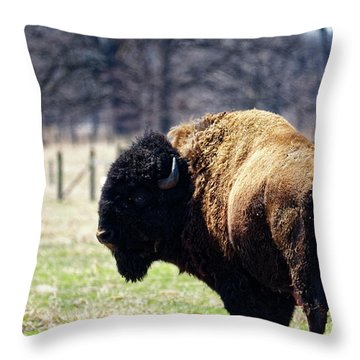 Male Bison Throw Pillow