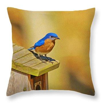 Male Blue Bird Guarding House Throw Pillow